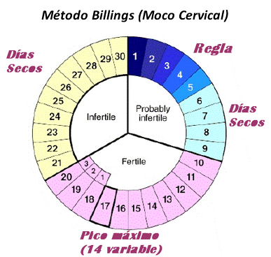 método billings